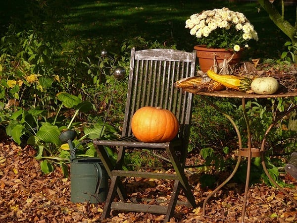 prepare your garden for fall