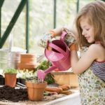 Toys That Will Encourage Your Kids to Play in the Garden