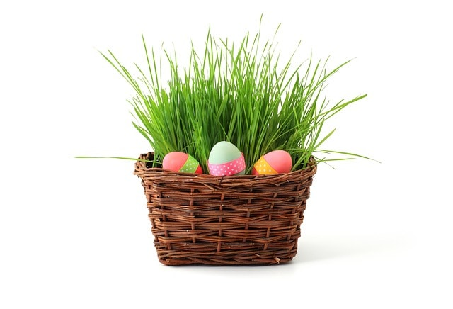 frugal easter gift ideas