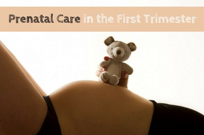 Prenatal Care in the first Trimester