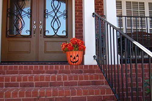 Pumpkin Planter for outdoor or indoor - Use it for planting your favorite fall flowers and decorating