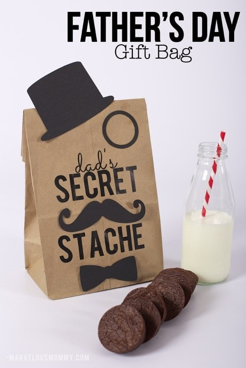 Father's Day Secret Stache Gift Bag